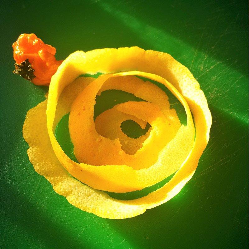 Lemon Sunshine YofY In t Veen Catering